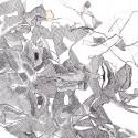 #1062 Pen & Ink drawing